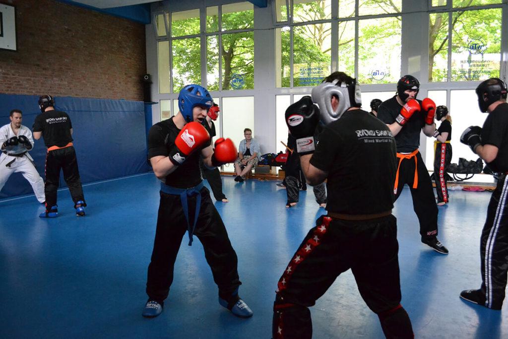 ryoku shin do- kickboxen- gruppe